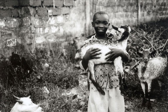 a young boy holds one of the goats in the herd he looks after in a small village in 										             Tanzania